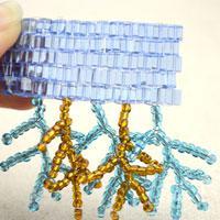 Coral fringe - branch fringe